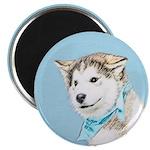 Siberian Husky Puppy Magnet