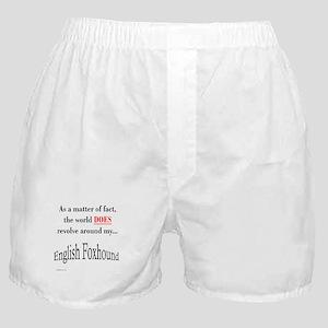 Foxhound World Boxer Shorts
