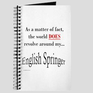 English Springer World Journal
