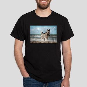 siberian-husky-dog-on-beach T-Shirt