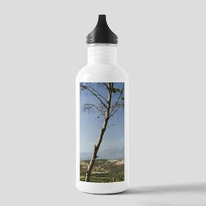 Phaestos: Cretan Lands Stainless Water Bottle 1.0L
