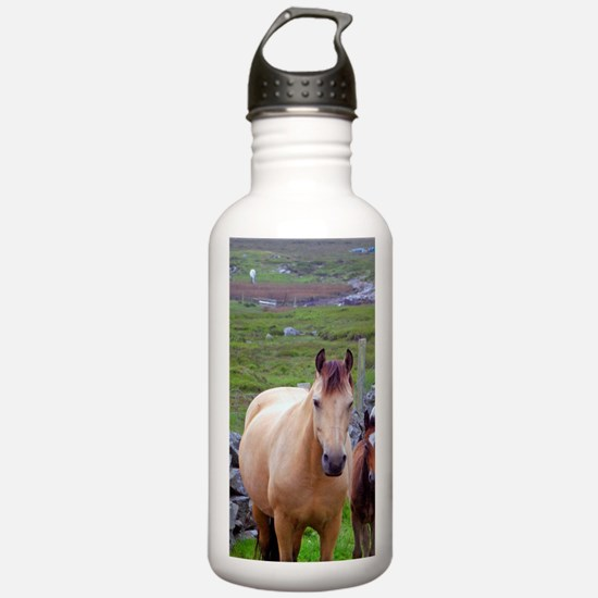 Ireland. Farm horses o Water Bottle