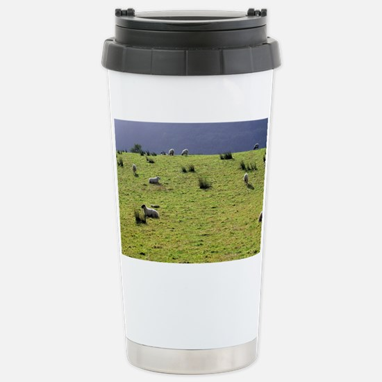 Sheep may safely graze on the g Stainless Steel Tr