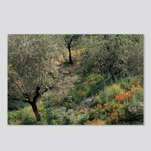 Europe, Italy, Umbria, Gu Postcards (Package of 8)