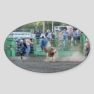Tan Bull Sticker (Oval)