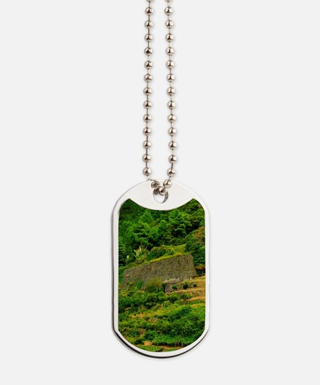 Italy, Tuscany. The Cinque Terra terraced Dog Tags