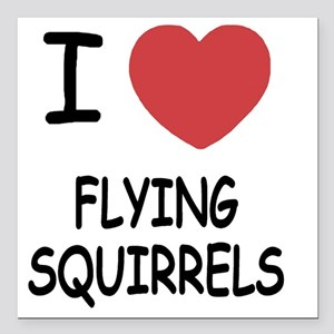 "FLYINGSQUIRRELS Square Car Magnet 3"" x 3"""