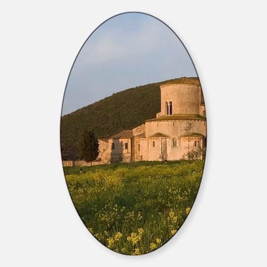 Near Castelnuovo dell'Abate. The mo Sticker (Oval)