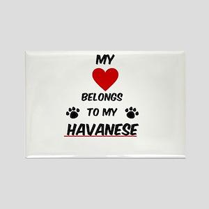 Havanese Magnets
