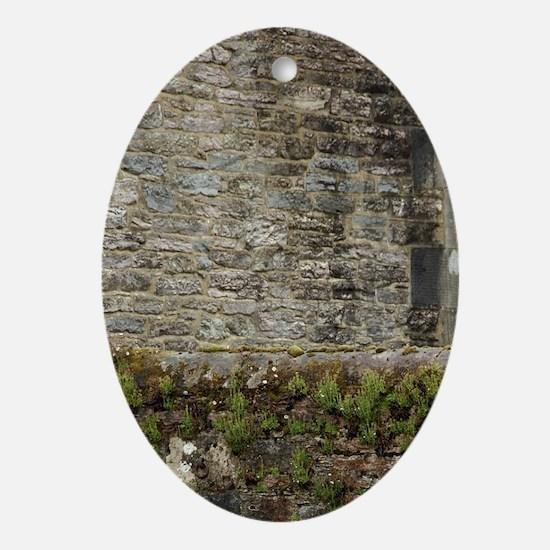 Killarney National Park. Oval Ornament