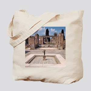The remains of the House of the Faun incl Tote Bag