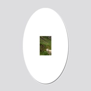 Ring of Kerry. Typical sheep 20x12 Oval Wall Decal