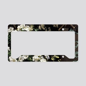 Europe, Italy, Umbria, Assisi License Plate Holder