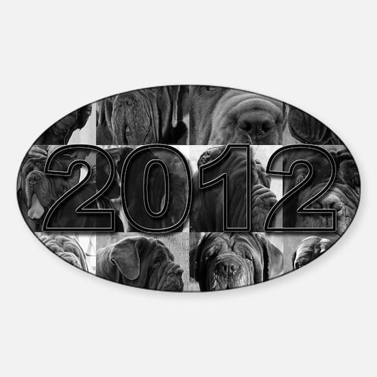 cover2012 copy Sticker (Oval)