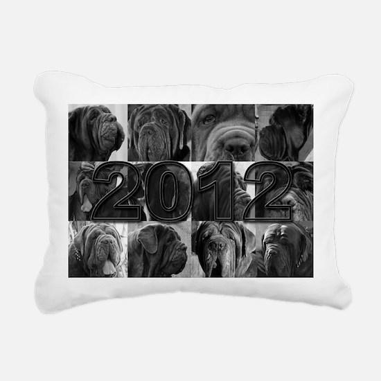 cover2012 copy Rectangular Canvas Pillow