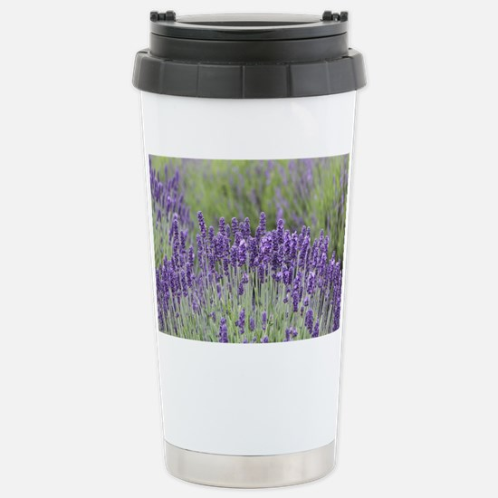 1-IMG_2325 Stainless Steel Travel Mug