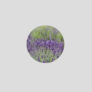 1-IMG_2325 Mini Button
