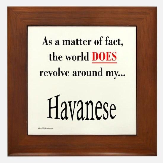 Havanese World Framed Tile