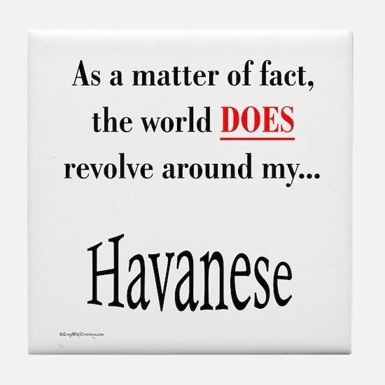 Havanese World Tile Coaster