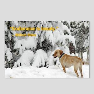 2012 B Calendar Tripp Postcards (Package of 8)