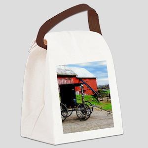 11x11 barn2 Canvas Lunch Bag