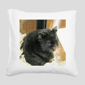 Black Hamster Square Canvas Pillow