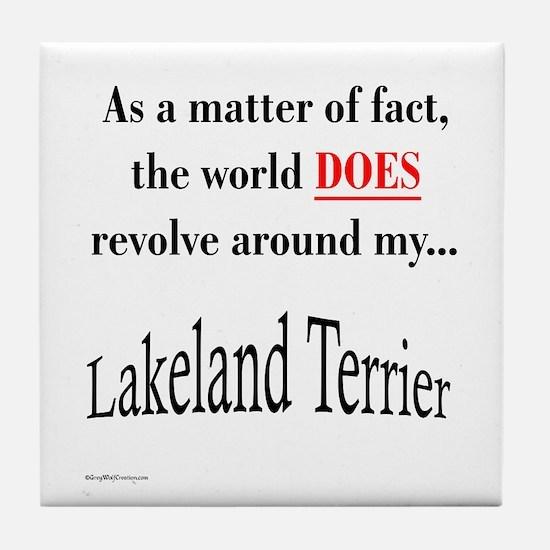 Lakeland World Tile Coaster