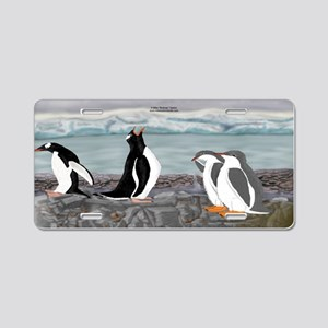 Gentoo Penguin Family License Plate