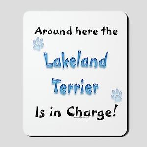 Lakeland Charge Mousepad