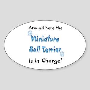 Mini Bull Charge Oval Sticker