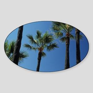 Monaco, Cote d'Azur, Montecarlo. Ca Sticker (Oval)