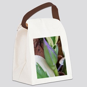 Patriot Hosta Bud Canvas Lunch Bag