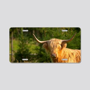 Hairy Highland longhorn cat Aluminum License Plate