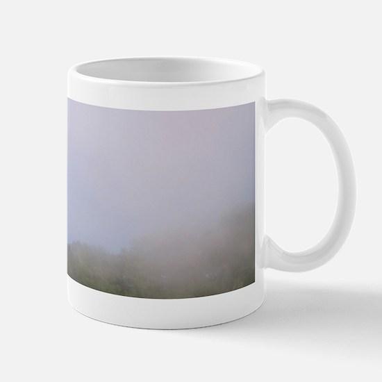 The Hollywood like Brasov Sign on the M Mug