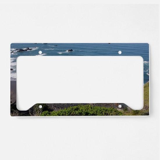 2010_0418Sam Boardman SP15wla License Plate Holder