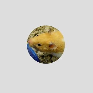 Orange-White Hamste... Mini Button