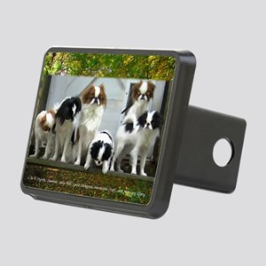 October-all Rectangular Hitch Cover