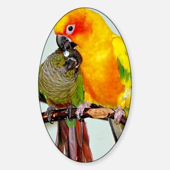 bird-5in1 Sticker (Oval)