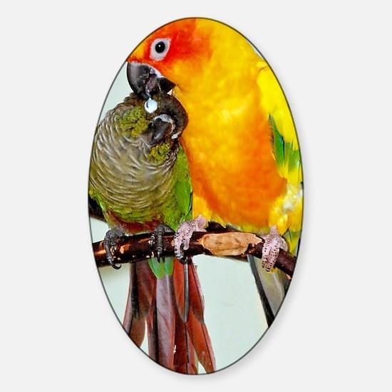 bird-iphone3 Sticker (Oval)
