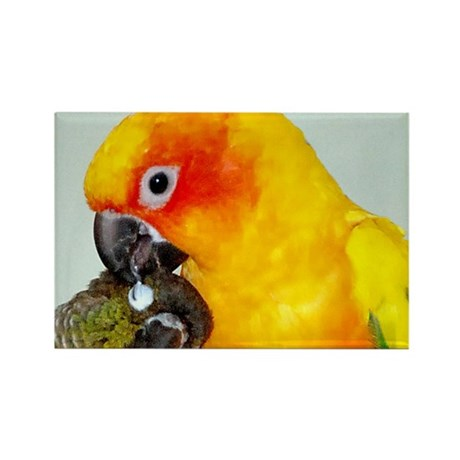 bird-license Rectangle Magnet