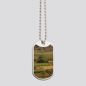 Europe, Spain, Balearics, Ibiza, Santa Ag Dog Tags