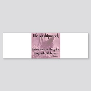 shipwreck2 Bumper Sticker