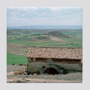 The Banares roman baths. Zaragoza pro Tile Coaster