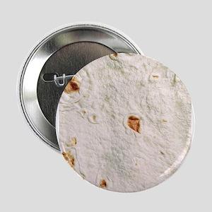 """tortilla 2.25"""" Button"""