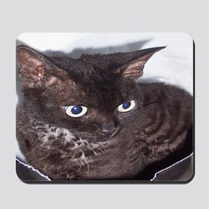 Cat-Sack-1 Mousepad