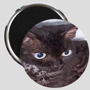 Cat-Sack-1 Magnet