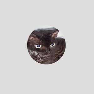 Cat-Sack-1 Mini Button