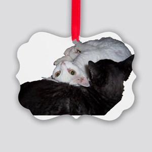 Cat-Wrap-1 Picture Ornament