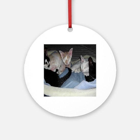Cat-Bag-1 Round Ornament