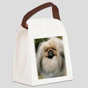 Pekingese 9Y201D-070 Canvas Lunch Bag